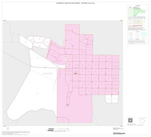 Primary view of object titled '2000 Census County Block Map: Pecos County, Inset G01'.