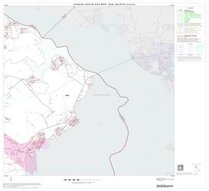 Primary view of object titled '2000 Census County Block Map: San Jacinto County, Block 3'.