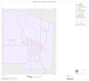 Primary view of object titled '2000 Census County Block Map: Concho County, Inset A01'.