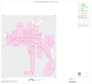 Primary view of object titled '2000 Census County Block Map: Blanco County, Inset A01'.