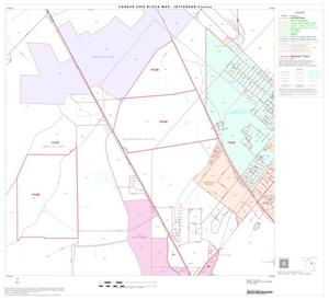 Primary view of object titled '2000 Census County Block Map: Jefferson County, Block 22'.