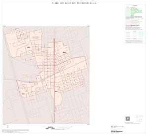 Primary view of object titled '2000 Census County Block Map: Montgomery County, Inset F01'.