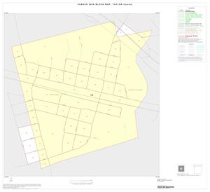 Primary view of object titled '2000 Census County Block Map: Taylor County, Inset A01'.