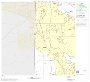 Primary view of object titled '2000 Census County Block Map: Tarrant County, Block 21'.