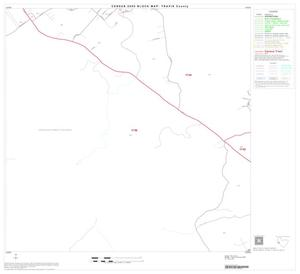 Primary view of object titled '2000 Census County Block Map: Travis County, Block 47'.