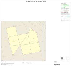 Primary view of object titled '2000 Census County Block Map: Lubbock County, Inset F01'.