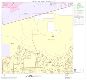 Primary view of object titled '2000 Census County Block Map: Tarrant County, Block 49'.