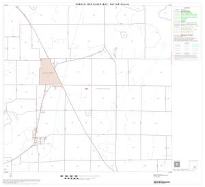 Primary view of object titled '2000 Census County Block Map: Taylor County, Block 19'.