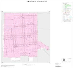 Primary view of object titled '2000 Census County Block Map: Cochran County, Inset A01'.