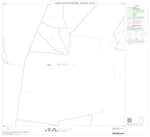 Primary view of object titled '2000 Census County Block Map: Hidalgo County, Block 8'.