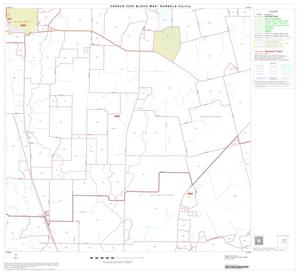 Primary view of object titled '2000 Census County Block Map: Runnels County, Block 7'.