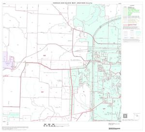 Primary view of object titled '2000 Census County Block Map: Grayson County, Block 11'.