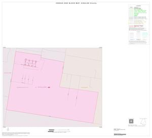 Primary view of object titled '2000 Census County Block Map: Hidalgo County, Inset D01'.
