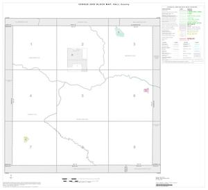 Primary view of object titled '2000 Census County Block Map: Hall County, Index'.