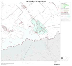 Primary view of object titled '2000 Census County Block Map: Burleson County, Block 17'.