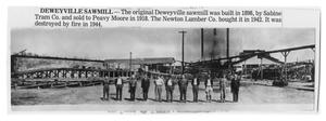 Primary view of object titled 'The Deweyville Sawmill'.