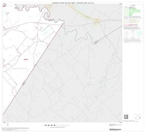 Primary view of object titled '2000 Census County Block Map: Guadalupe County, Block 13'.