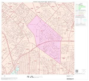 Primary view of object titled '2000 Census County Block Map: Bexar County, Block 39'.