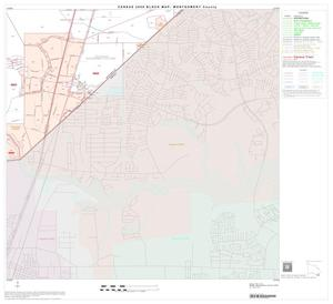 Primary view of object titled '2000 Census County Block Map: Montgomery County, Block 49'.