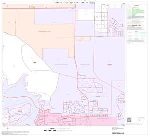 Primary view of object titled '2000 Census County Block Map: Tarrant County, Block 33'.