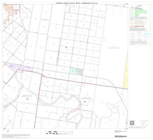 Primary view of object titled '2000 Census County Block Map: Cameron County, Block 29'.