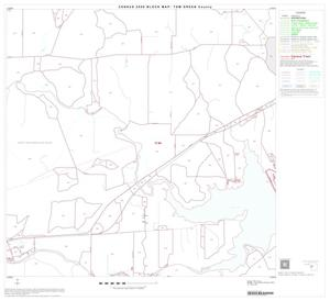 Primary view of object titled '2000 Census County Block Map: Tom Green County, Block 15'.