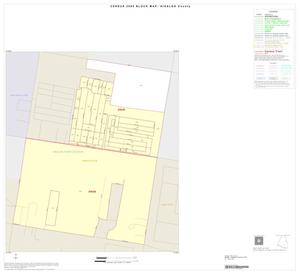 Primary view of object titled '2000 Census County Block Map: Hidalgo County, Inset I01'.