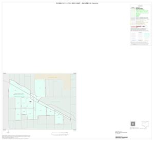 Primary view of object titled '2000 Census County Block Map: Cameron County, Inset A01'.