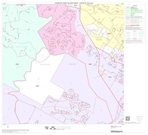 Primary view of object titled '2000 Census County Block Map: Travis County, Block 61'.