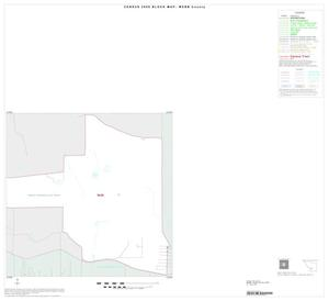 Primary view of object titled '2000 Census County Block Map: Webb County, Inset C02'.