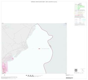 Primary view of object titled '2000 Census County Block Map: San Jacinto County, Inset A01'.