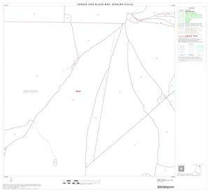 Primary view of object titled '2000 Census County Block Map: Hidalgo County, Block 11'.