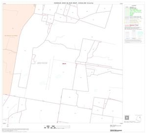 Primary view of object titled '2000 Census County Block Map: Hidalgo County, Block 25'.