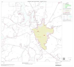 Primary view of object titled '2000 Census County Block Map: Young County, Block 11'.