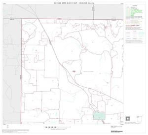 Primary view of object titled '2000 Census County Block Map: Coleman County, Block 1'.