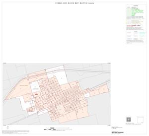 Primary view of object titled '2000 Census County Block Map: Martin County, Inset B01'.
