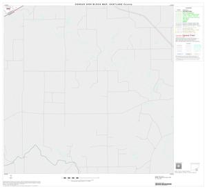 Primary view of object titled '2000 Census County Block Map: Eastland County, Block 19'.
