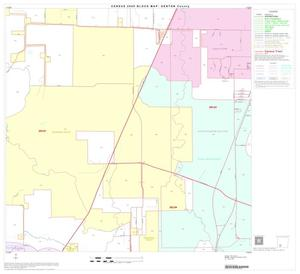 Primary view of object titled '2000 Census County Block Map: Denton County, Block 43'.