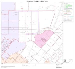 Primary view of object titled '2000 Census County Block Map: Cameron County, Block 28'.