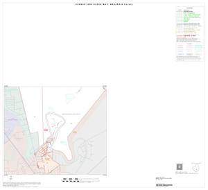 Primary view of object titled '2000 Census County Block Map: Brazoria County, Inset L02'.