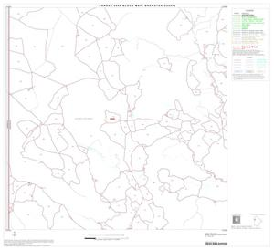 Primary view of object titled '2000 Census County Block Map: Brewster County, Block 13'.