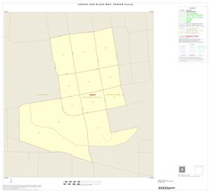 Primary view of object titled '2000 Census County Block Map: Parker County, Inset A01'.