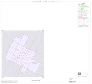Primary view of object titled '2000 Census County Block Map: San Jacinto County, Inset C01'.