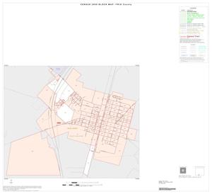 Primary view of object titled '2000 Census County Block Map: Frio County, Inset D01'.