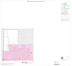 Primary view of object titled '2000 Census County Block Map: Moore County, Inset C01'.