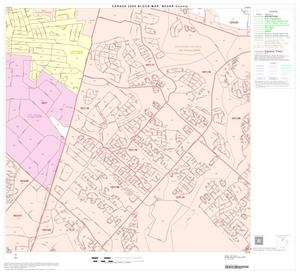 Primary view of object titled '2000 Census County Block Map: Bexar County, Block 30'.