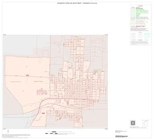 Primary view of object titled '2000 Census County Block Map: Fannin County, Inset D01'.