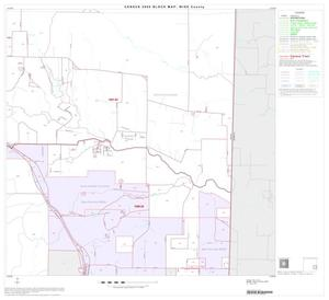 Primary view of object titled '2000 Census County Block Map: Wise County, Block 12'.
