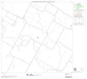 Primary view of object titled '2000 Census County Block Map: Travis County, Block 42'.