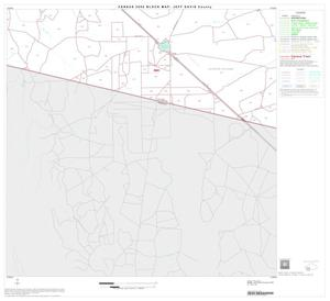 Primary view of object titled '2000 Census County Block Map: Jeff Davis County, Block 10'.